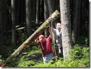 05-24-08 Yarding logs in the lower pasture 002