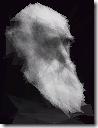 100个半透明三角形组成的达尔文肖像
