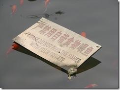 huanhuaxi004